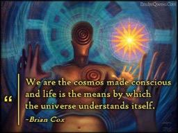 Cosmos Made Conscious