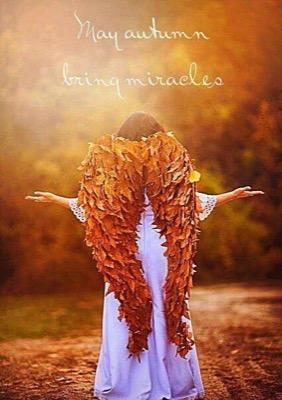 Autumn Miraclews